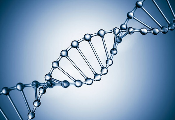 DNA修復
